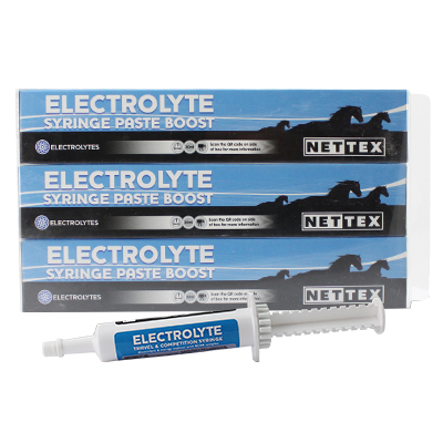 Electrolyte Syringe Paste Boost